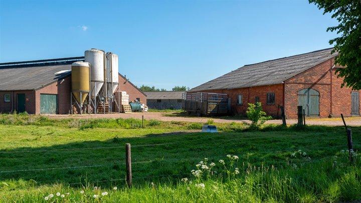 Fosfaatrechten: geen uitzondering voor biologische melkveehouder