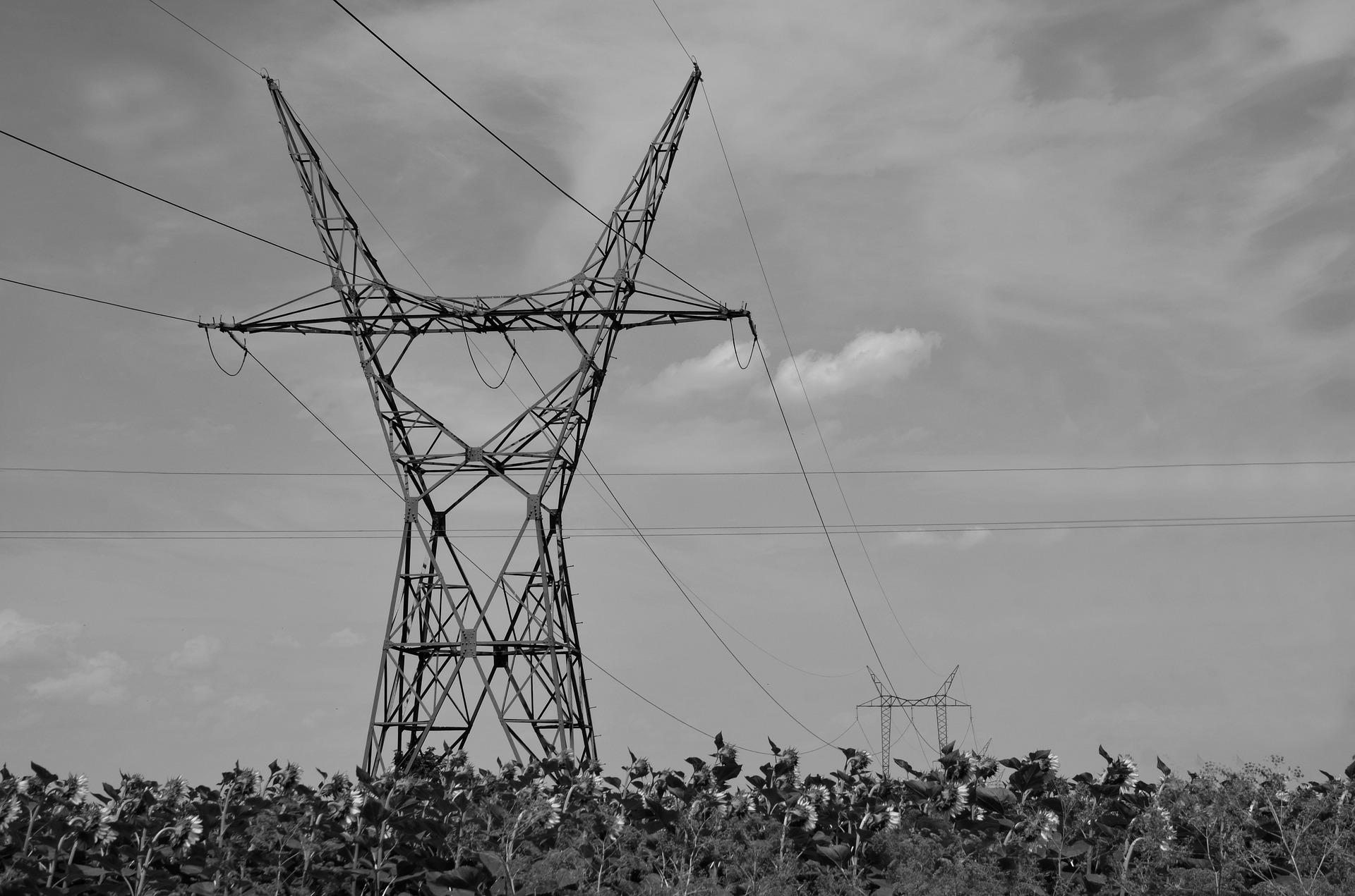 ACM: groene stroom en Nederlandse stroom zijn nu inderdaad groen en Nederlands