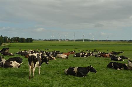 Rechtbank Gelderland vernietigt 80 op het PAS gebaseerde natuurvergunningen